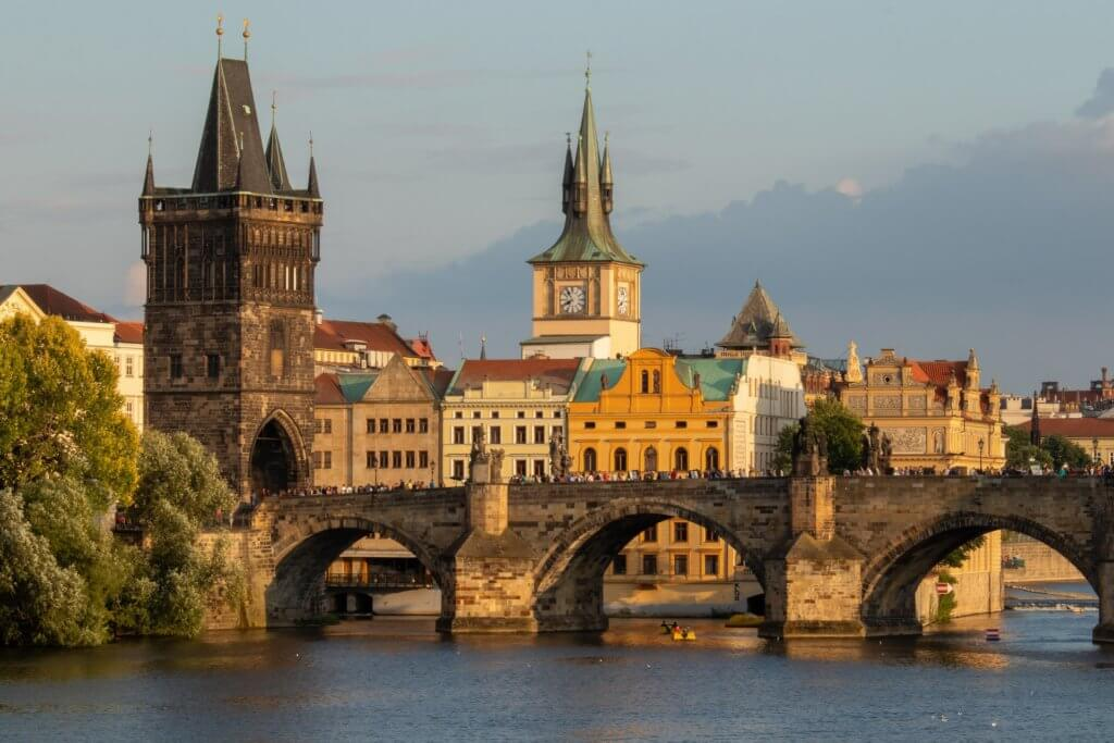 Susanne Raab invited to speak at the International Academy of Law and Mental Health in Prague